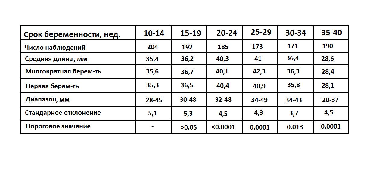 Длина шейки матки при беременности по неделям таблица норм